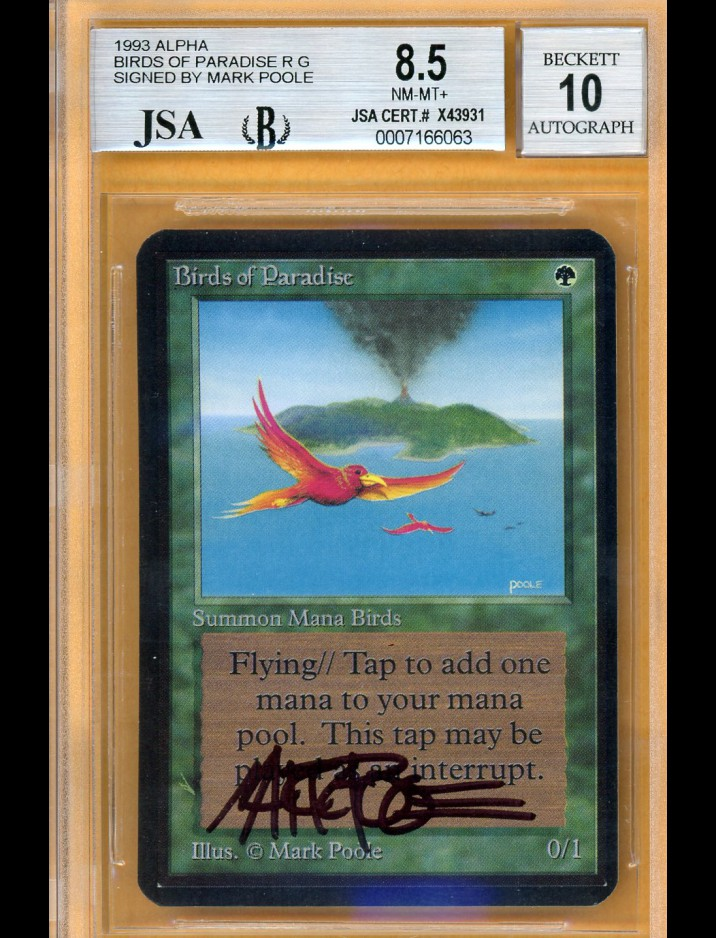BGS/JSA 8.5/10 Alpha Birds of Paradise